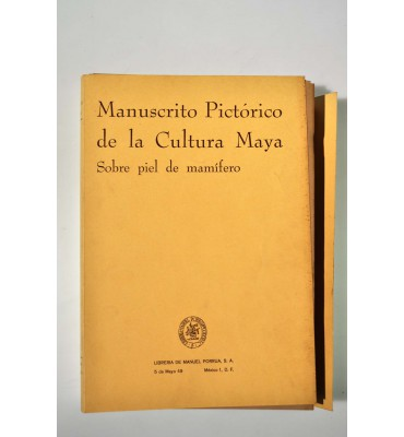 Manuscrito pictórico de la cultura Maya sobre piel de mamífero.