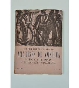 Amadises de América