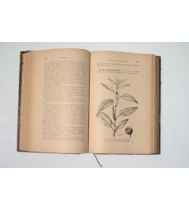 Les textiles végétaux *
