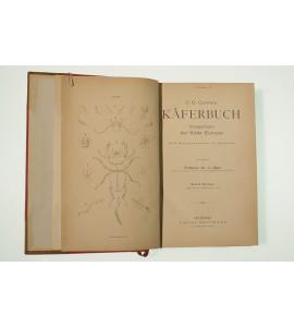 Käferbuch