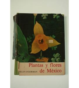 Plantas y flores de México *