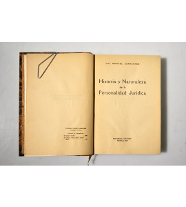 Historia y naturaleza de la personalidad jurídica