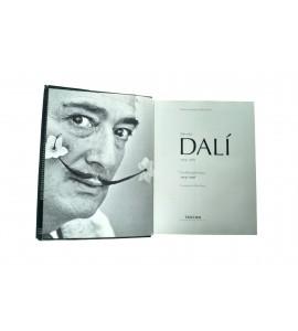 Dalí, la obra pictórica *