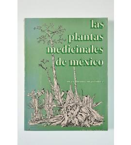 Las plantas medicinales de méxico *